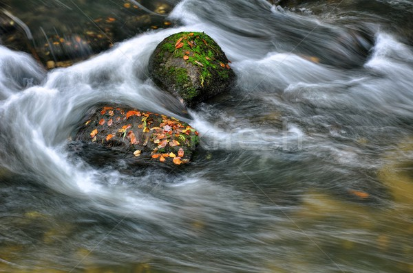 Stock photo: Autumn river with stones