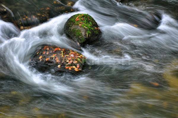 Foto d'archivio: Autunno · fiume · pietre · veloce · rocce