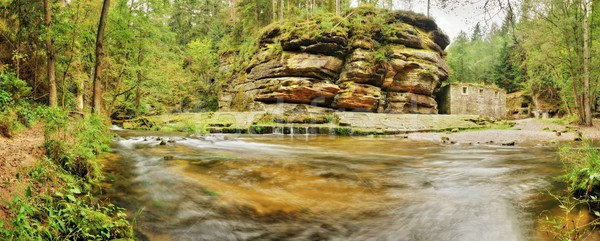 реке красивой долины дерево Сток-фото © ondrej83