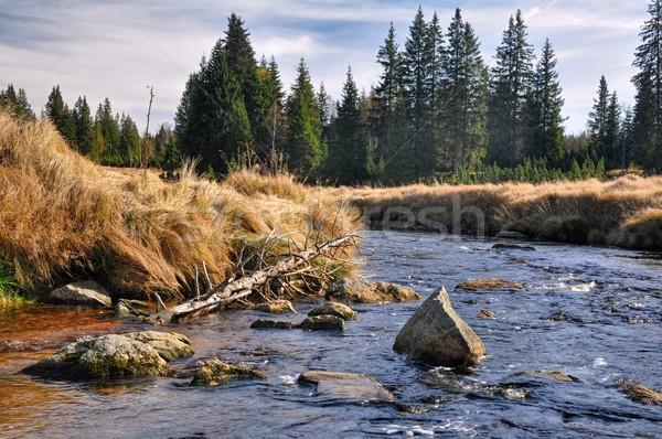 Autumn river Stock photo © ondrej83