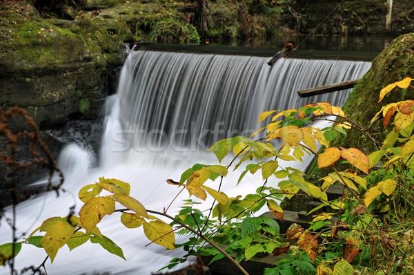 Río pequeño paisaje rocas árbol Foto stock © ondrej83
