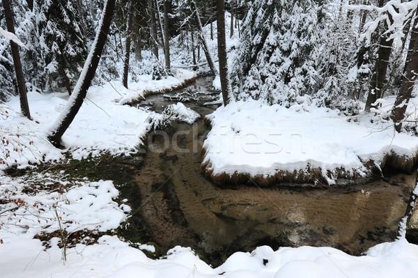 Winter landschap boheems Zwitserland sneeuw tsjechisch Stockfoto © ondrej83