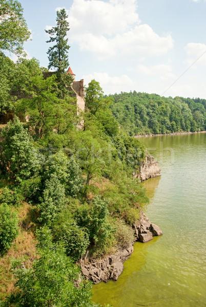 Zbiornik dolinie wody zielone wiosną lasu Zdjęcia stock © ondrej83