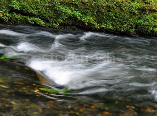 Automne rivière rapide roches forêt Photo stock © ondrej83