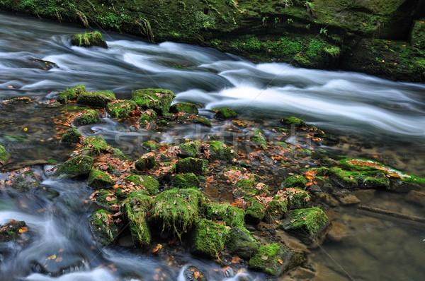 Jesienią rzeki kamienie szybko skał Zdjęcia stock © ondrej83