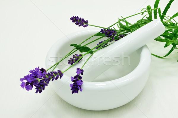 Lavender Stock photo © ondrej83