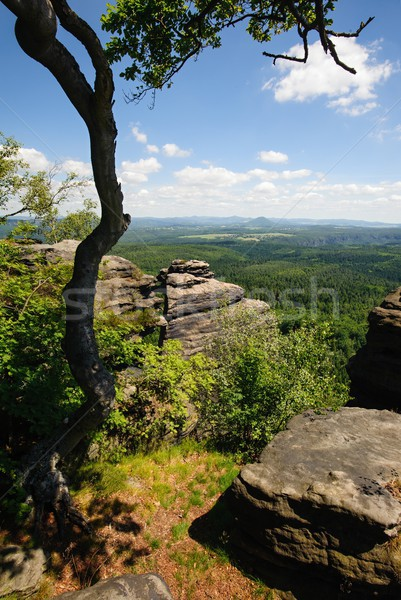 été paysage roches ciel arbre Photo stock © ondrej83