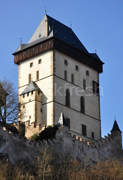 Castle Karlstejn  Stock photo © ondrej83