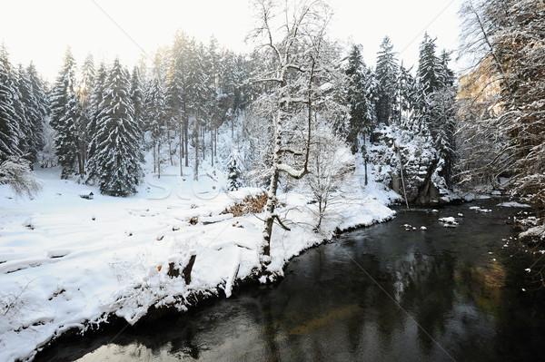 Winter Fluss Bohemien Schweiz Schnee Stock foto © ondrej83