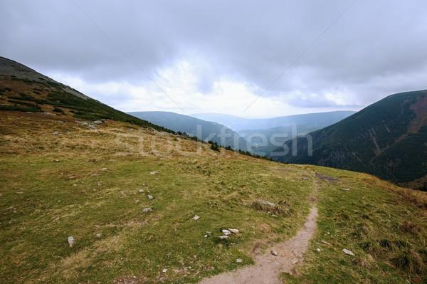 Taş dağ manzara çam bulutlu gökyüzü Stok fotoğraf © ondrej83
