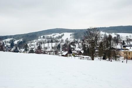 Stock photo: Winter panorama