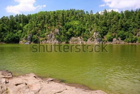 водохранилище долины воды зеленый весны лес Сток-фото © ondrej83