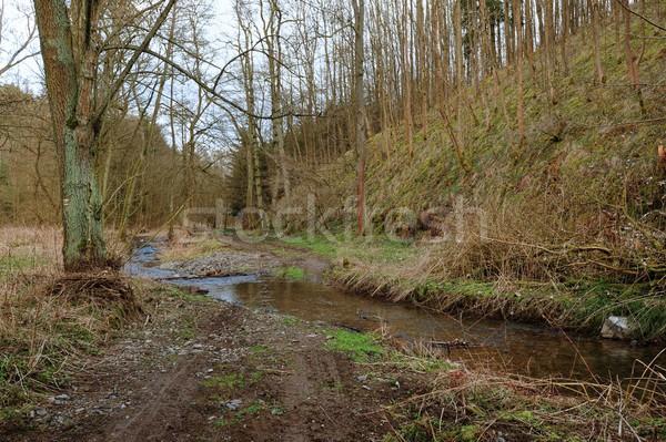 Bahar gün dere soğuk su ağır Stok fotoğraf © ondrej83