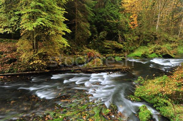 Autunno colori fiume colorato alberi foglie Foto d'archivio © ondrej83