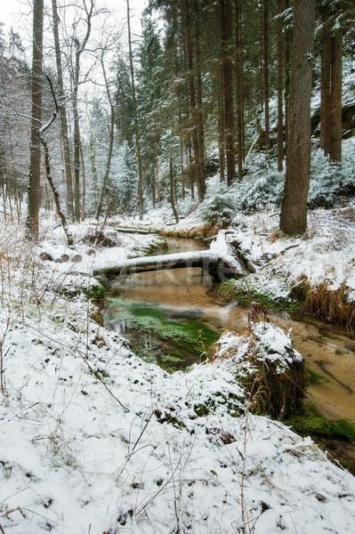 A river flowing winter wonderland Stock photo © ondrej83