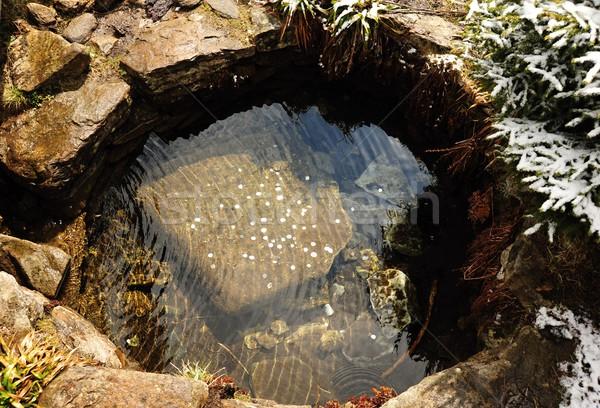 Víz forrás kicsi szökőkút apró absztrakt Stock fotó © ondrej83
