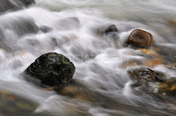 Stock photo: Autumn river with stones