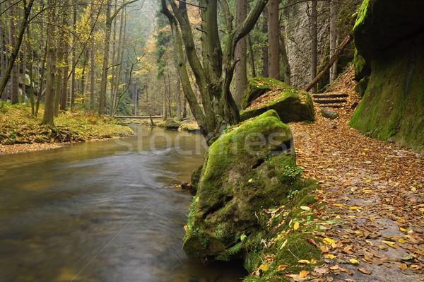 Rzeki mały krajobraz skał drzewo Zdjęcia stock © ondrej83