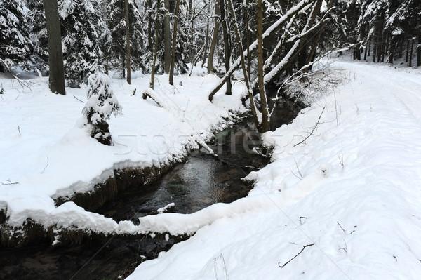 Stock photo: Winter landscape of Bohemian Switzerland