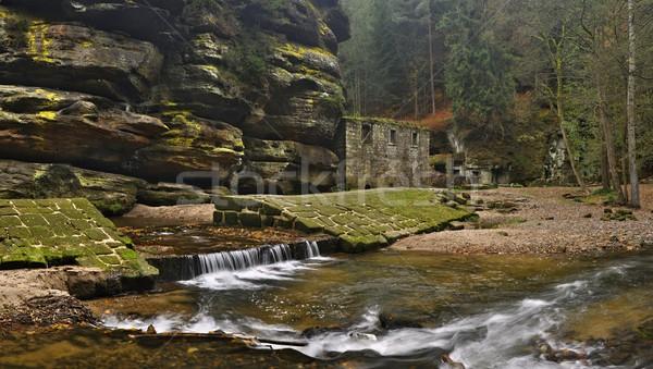 Old mill with Kamenice river Stock photo © ondrej83