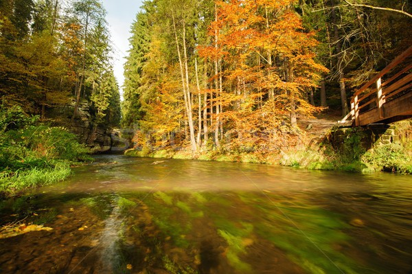 Autunno colori fiume legno ponte colorato Foto d'archivio © ondrej83