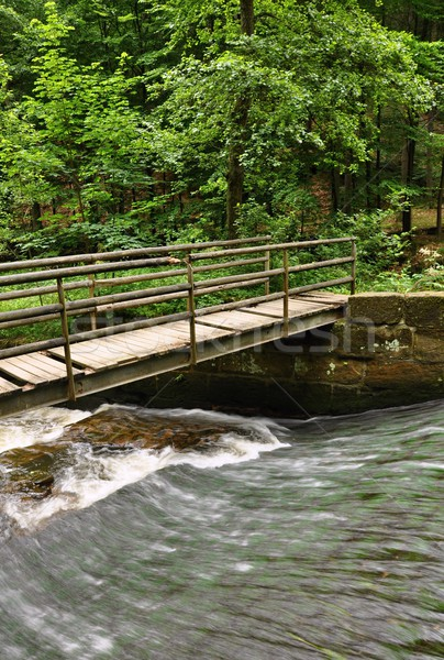 Pequeño puente arroyo verde forestales agua Foto stock © ondrej83