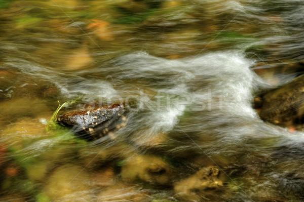 Vagues rivière faible tchèque Suisse paysage Photo stock © ondrej83