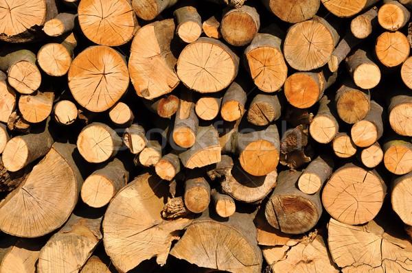 Tűzifa száraz egymásra pakolva kész hosszú tél Stock fotó © ondrej83