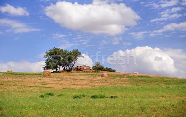 Summer Landscape Stock photo © ondrej83