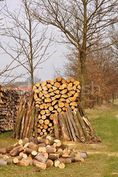 Tűzifa egymásra pakolva nagy köteg kész fűtés Stock fotó © ondrej83