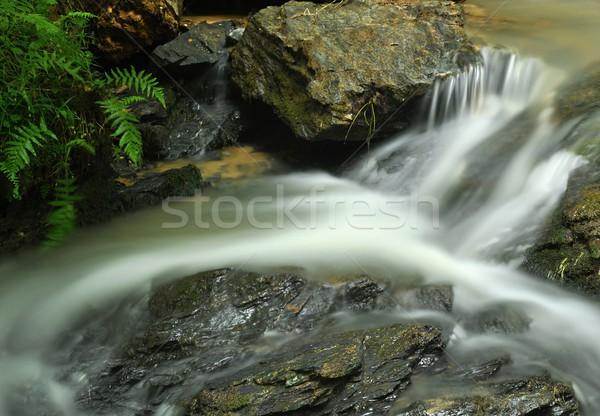 River Stock photo © ondrej83