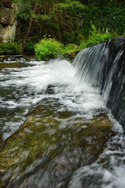 Rivière sauvage forêt tchèque Suisse eau Photo stock © ondrej83