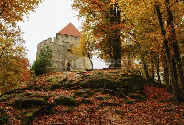 Piccolo castello bella colori autunno tempo Foto d'archivio © ondrej83