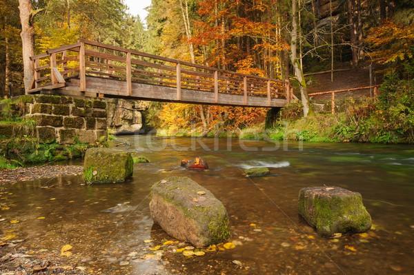 Сток-фото: осень · цветами · реке · древесины · моста