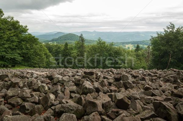 морем камней пейзаж каменные дерево Сток-фото © ondrej83