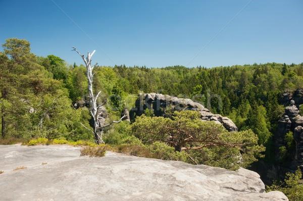 Grès roches ciel bleu tchèque Suisse ciel Photo stock © ondrej83