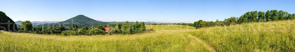 表示 チェコ語 スイス 森林 自然 ストックフォト © ondrej83