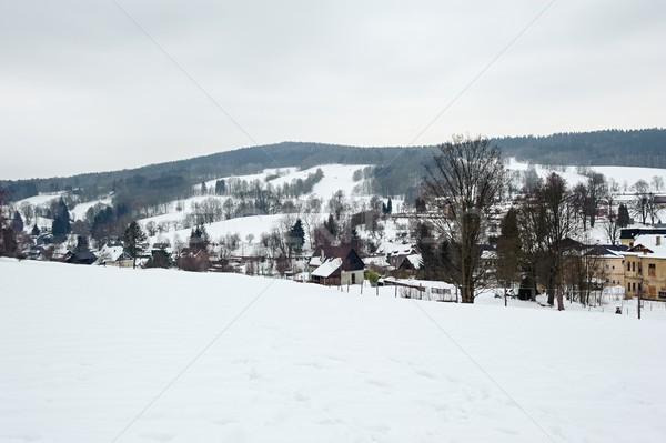 зима пейзаж морозный деревья облачный небе Сток-фото © ondrej83