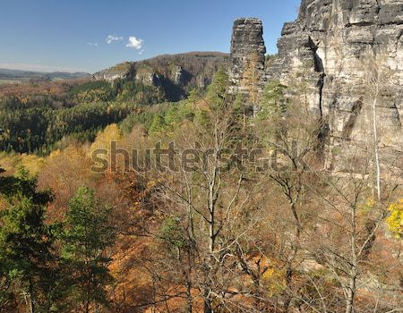 Rocks in Czech Switzerland Stock photo © ondrej83