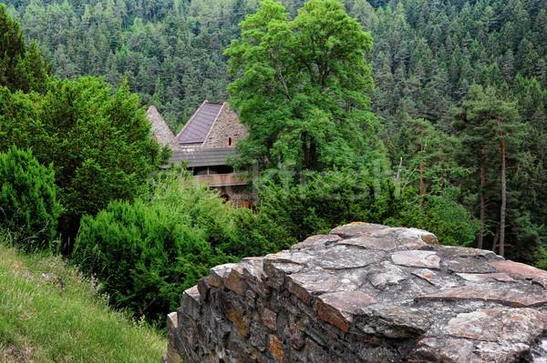 Vecchio castello pietra verde cielo nubi Foto d'archivio © ondrej83