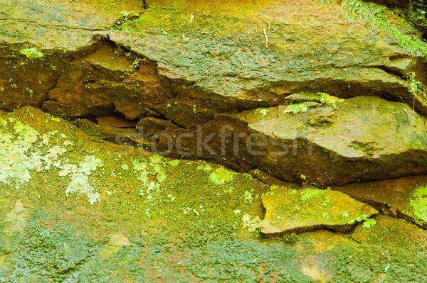 Textúra kő moha durva zöld tavasz Stock fotó © ondrej83