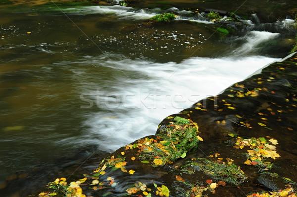 Detail Autumn River Stock photo © ondrej83