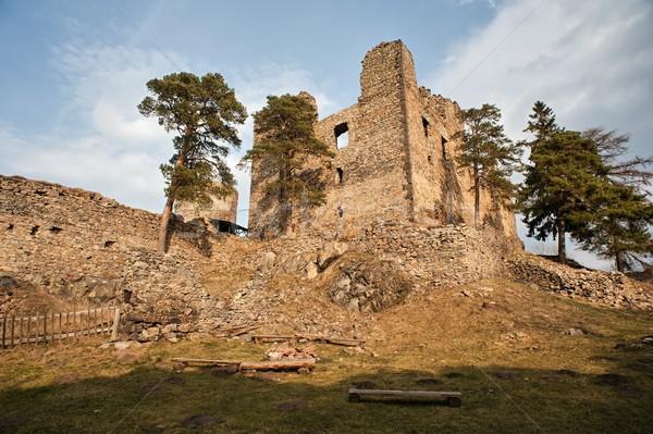 Rovine vecchio castello Repubblica Ceca costruzione panorama Foto d'archivio © ondrej83
