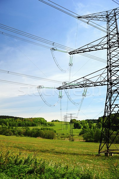 Manzara elektrik orman yaz Stok fotoğraf © ondrej83