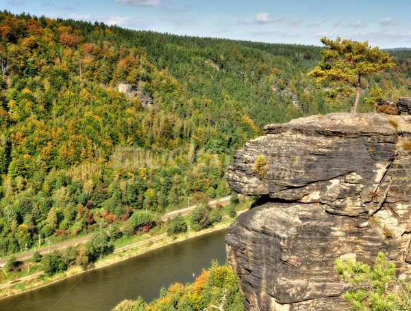 Elbe and rocks Stock photo © ondrej83
