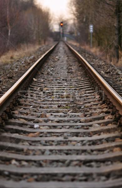 Ferrovia distanza ghiaia infinito cielo Foto d'archivio © ondrej83