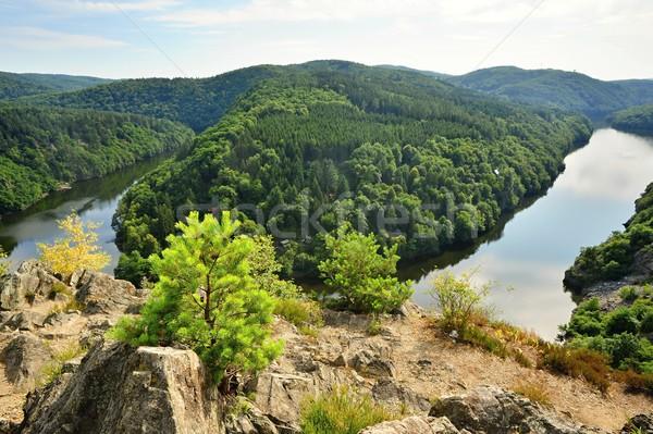 перспектива реке Чешская республика дерево пейзаж фон Сток-фото © ondrej83