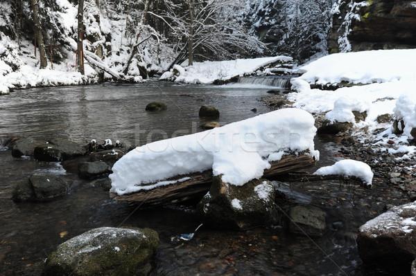 зима реке богемский Швейцария снега чешский Сток-фото © ondrej83