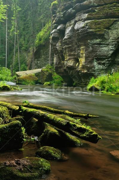 Nehir küçük manzara kayalar yaprak Stok fotoğraf © ondrej83
