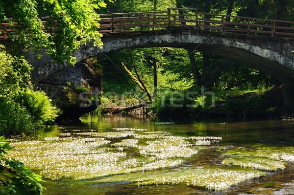Old bridge across the river Stock photo © ondrej83